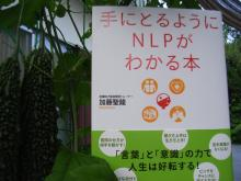 ゆめたま SENSE OF わんDER-NLP本