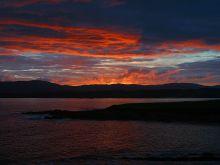 SENSE OF わんDER-Ireland Sunset