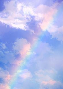 SENSE OF わんDER-Pink sherbet