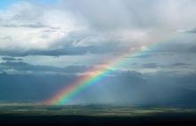 SENSE OF わんDER-rainbow
